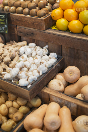 Garlic, ginger, potatoes and butternut squash display in grocery store marketの写真素材 [FYI02177746]