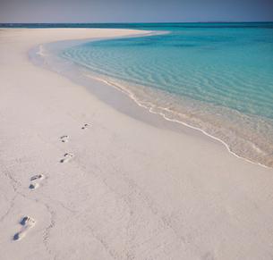 Footprints in sand on tropical beachの写真素材 [FYI02178037]