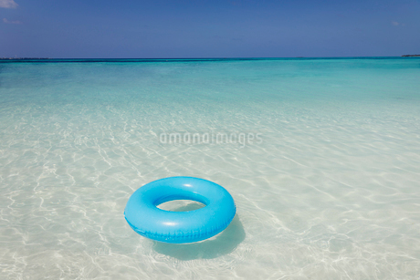 Blue inflatable ring floating in tropical oceanの写真素材 [FYI02178141]