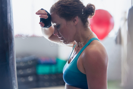 Tired female boxer wiping sweat from brow in gymの写真素材 [FYI02178188]