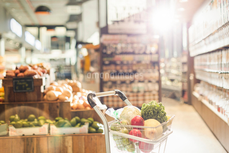 Fresh produce in shopping cart in grocery store marketの写真素材 [FYI02178367]