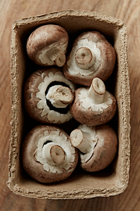 Still life fresh, organic, healthy, six brown mushrooms in containerの写真素材 [FYI02178378]