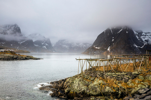 Foggy, cold rugged mountains and river, Hamnoya, Lofoten, Norwayの写真素材 [FYI02178507]
