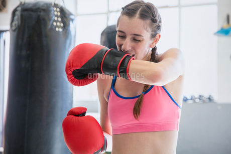 Young female boxer biting, removing boxing gloves at punching bag in gymの写真素材 [FYI02179180]