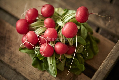 Still life close up fresh, organic, healthy, red radishes in rustic wood crateの写真素材 [FYI02179330]