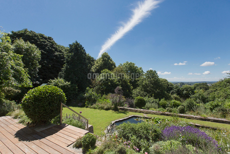 View of sunny, green summer garden with treesの写真素材 [FYI02179484]