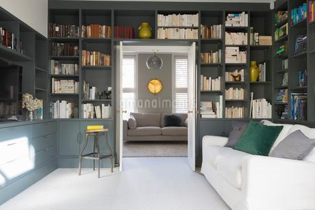 Luxury home showcase libraryの写真素材 [FYI02180041]