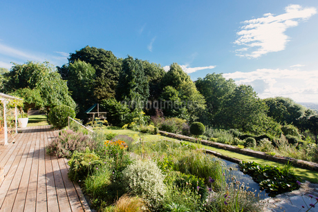 View of sunny summer landscaped gardenの写真素材 [FYI02180551]