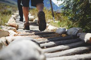 Feet of male hiker hiking along log footpathの写真素材 [FYI02180671]