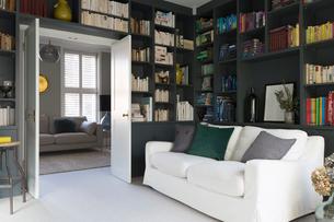 Luxury home showcase libraryの写真素材 [FYI02180745]
