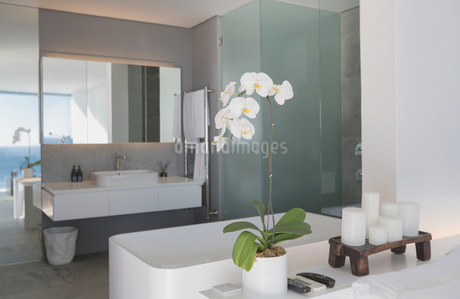 Modern, luxury home showcase interior bathroomの写真素材 [FYI02180794]