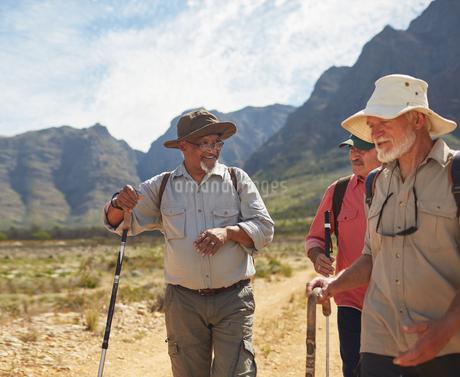 Active senior men friends hikingの写真素材 [FYI02180803]