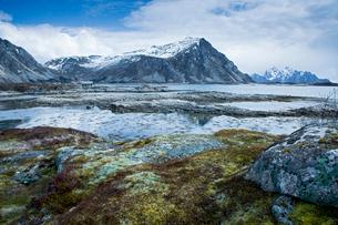 Moss covered rocks among remote fjord and mountains, Langraget, Lofoten, Norwayの写真素材 [FYI02180848]