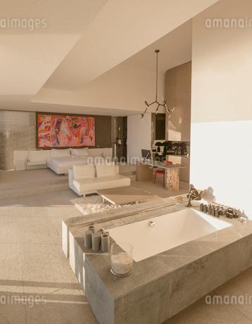 Modern, luxury home showcase soaking tub bathtub in bedroomの写真素材 [FYI02181034]
