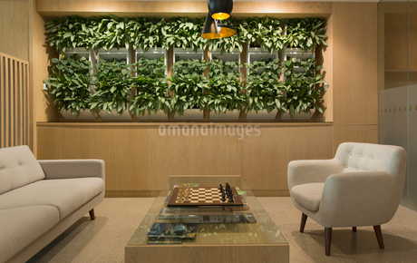 Lounge with plant display, chessboard and seatingの写真素材 [FYI02181363]