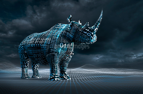 Computer generated image binary code over rhinocerosesの写真素材 [FYI02181611]