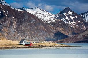 Remote houses along fjord below craggy mountains, Flakstadpollen, Lofoten, Norwayの写真素材 [FYI02181733]