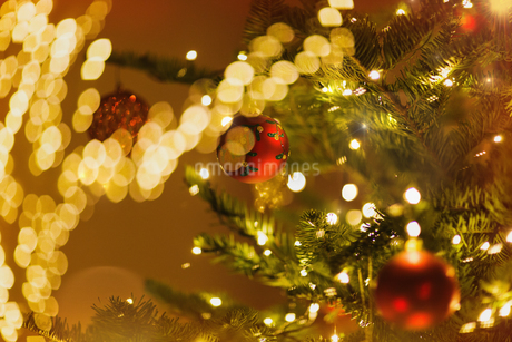 Red ornaments hanging from Christmas tree with string lightsの写真素材 [FYI02182022]