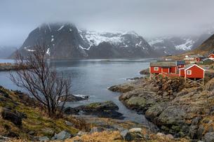 Fishing village at waterfront below snowy, craggy mountains, Hamnoya, Lofoten, Norwayの写真素材 [FYI02182187]