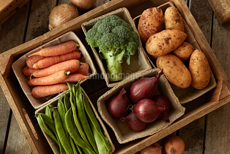 Still life fresh, organic, healthy vegetable harvest variety in wood crateの写真素材 [FYI02182502]
