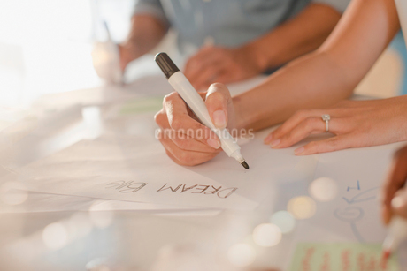 "Creative female entrepreneur writing ""Dream Big"" on posterの写真素材 [FYI02182544]"