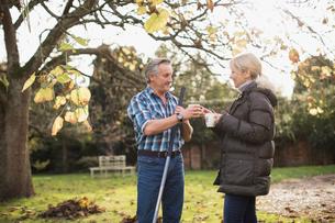 Mature couple drinking coffee and raking autumn leaves in sunny backyardの写真素材 [FYI02183160]