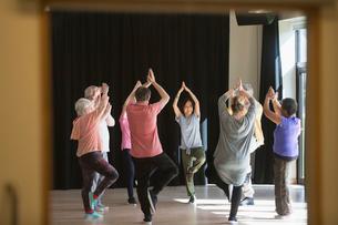 Active seniors exercising in circle, practicing yoga tree poseの写真素材 [FYI02183421]