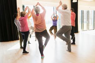 Active seniors exercising, practice yoga tree pose in circleの写真素材 [FYI02184792]