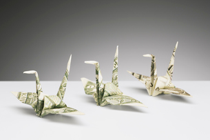 Origami cranes made of dollar bills on counterの写真素材 [FYI02186321]