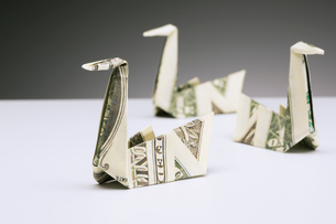 Origami swans made of dollar bills on counterの写真素材 [FYI02186399]