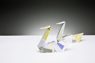 Origami swans made of Euros on counterの写真素材 [FYI02186549]