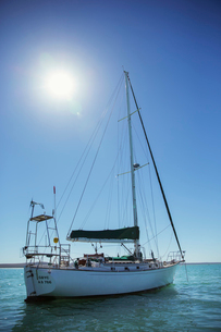 Sailboat in water on sunny dayの写真素材 [FYI02187205]