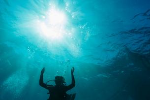 Woman scuba diving underwater, Vava'u, Tonga, Pacific Oceanの写真素材 [FYI02187261]
