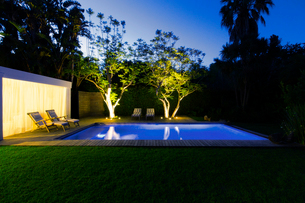 Illuminated swimming pool and trees in backyard at duskの写真素材 [FYI02187362]