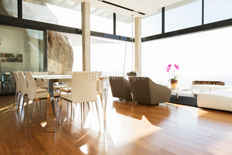 Dining and living area in modern houseの写真素材 [FYI02187366]
