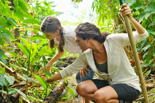 Woman and girl inspecting plants in gardenの写真素材 [FYI02187439]