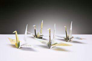 Origami cranes made of Euros on counterの写真素材 [FYI02187504]