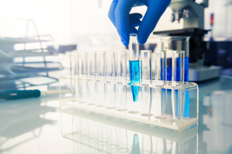 Scientist placing test tube with solution in rack in labの写真素材 [FYI02187590]