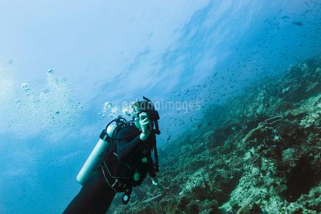Portrait scuba diver underwater, Vava'u, Tonga, Pacific Oceanの写真素材 [FYI02187707]