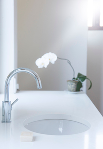 Sink, counter, bar of soap and flower in modern bathroomの写真素材 [FYI02188875]