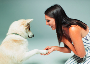 Smiling woman shaking dogs pawの写真素材 [FYI02188977]
