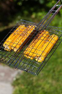 Sweden, Vasterbotten, Boviken, Grilled sweet cornの写真素材 [FYI02189865]