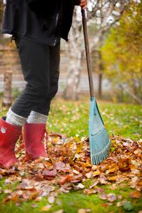 Nacka, Uppland, Sweden, Woman wearing rubber boots raking auの写真素材 [FYI02190137]