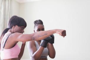 Mother teaching daughter boxingの写真素材 [FYI02190149]