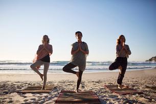 Serene women practicing yoga tree pose on sunny beach during yoga retreatの写真素材 [FYI02190734]
