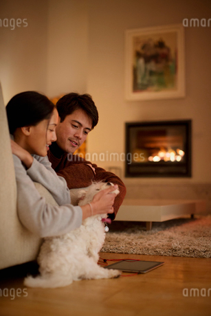 Couple petting dog in living roomの写真素材 [FYI02190958]