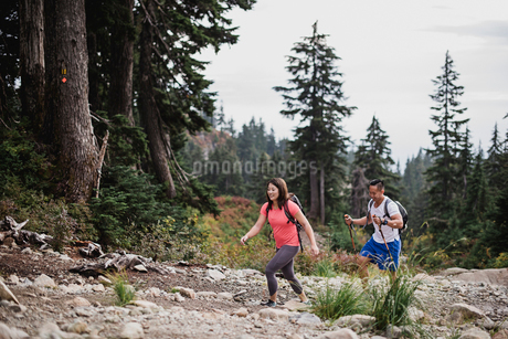 Couple hiking in woodsの写真素材 [FYI02191005]