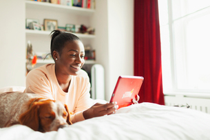 Smiling young woman using digital tablet next to sleeping dog on bedの写真素材 [FYI02191320]