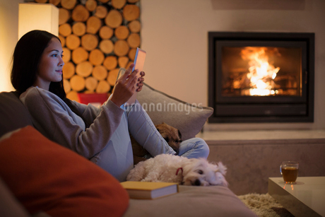 Young woman with dogs using digital tablet on living room sofaの写真素材 [FYI02191356]