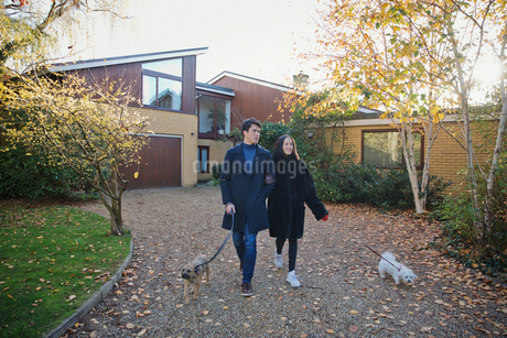 Couple walking dogs in autumn drivewayの写真素材 [FYI02191965]